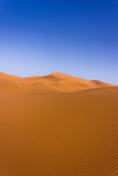 Sahara desert. Dune in the sahara desert stock photography