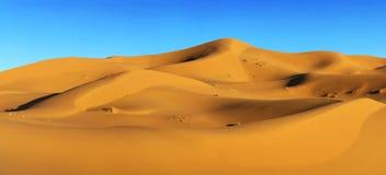 Sahara desert. Dunes of Sahara desert in Morocco royalty free stock photos