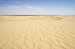 Sahara desert dunes and ripples Stock Photos