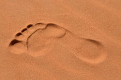 Sahara desert - Erg Chebbi. Erg Chebii is a part of Sahara. Desert is in Morocco near to Merzouga Stock Photography