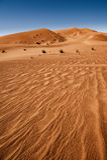 Sahara desert, Erg Chebbi Royalty Free Stock Images