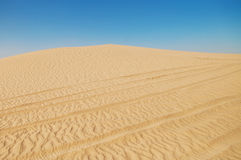 Sahara desert landscape Stock Photos
