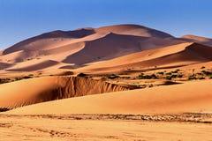 Sahara Desert Merzouga Marocco royalty free stock photos