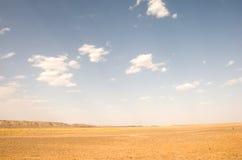 Sahara Desert in Morocco. Border of Sahara before the Sunset in Morocco Stock Images
