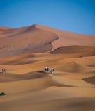 Sahara desert in Morocco. Dunes of Sahara desert during the sunset, Morocco Royalty Free Stock Photography