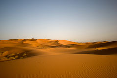Sahara desert in Morocco Stock Images