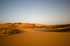 Sahara desert in Morocco. Dunes of Sahara desert during the sunset, Morocco Stock Images