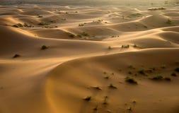 Sahara desert in Morocco. Dunes of Sahara desert during the sunset, Morocco Stock Photography