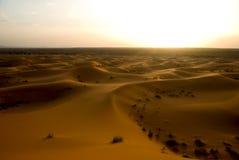 Sahara desert in Morocco. Dunes of Sahara desert during the sunset, Morocco Stock Photo