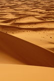 Sahara Desert Morocco Royalty Free Stock Photos
