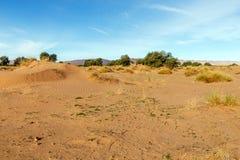 Sahara Desert, Morocco stock photography