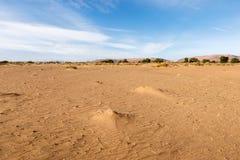 Sahara Desert, Morocco. The landscape in the Sahara desert Morocco stock photo