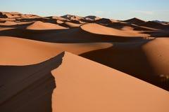 Sahara desert. The sahara Desert near Merzouga during sunrise royalty free stock images