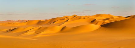 Sahara Desert Panorama Royalty Free Stock Images