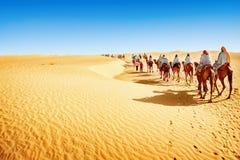 Sahara desert. People in the Sahara desert stock photo