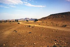 Sahara Desert Road. Dry dirt road track in the Sahara desert Stock Image