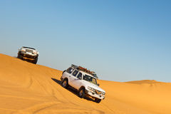 Sahara Desert Safari. Off-road vehicles driving in the Awbari Sand Sea, Libya royalty free stock images