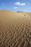 Sahara desert sand dunes with cloudy blue sky. Stock Photos