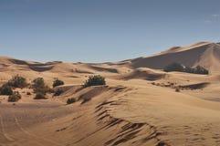 Sahara desert Stock Photography