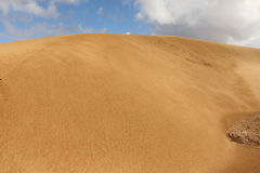 Sahara Desert. Sand dunes of the Sahara Desert - outside Layounne - Western Sahara Royalty Free Stock Photography