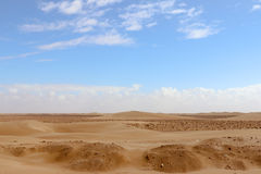 Sahara Desert. Sand dunes of the Sahara Desert - outside Layounne - Western Sahara Royalty Free Stock Image