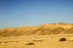 Sahara desert sand dunes Stock Photo