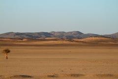 Sahara desert in Sudan in Africa Stock Photos