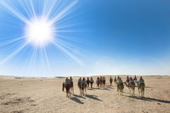 Sahara desert with sun and tourists Stock Photography