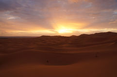 Sahara desert at sunrise in Morocco Royalty Free Stock Photos