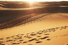 Sahara desert on sunset Stock Photos