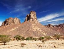 Sahara Desert, Tassili N'Ajjer, Algeria Royalty Free Stock Photography