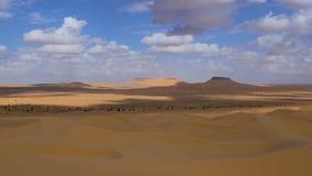 Sahara Desert, Tembaine, Tunisia. Typical landscape. stock video