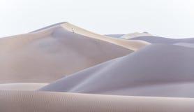 Sahara dunes Stock Photos