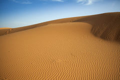 Sahara dunes Royalty Free Stock Photography