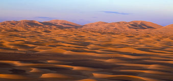 Sahara at dusk Royalty Free Stock Image