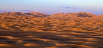 Sahara at dusk Royalty Free Stock Image