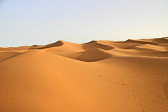 Sahara lansdscape Royalty Free Stock Photography