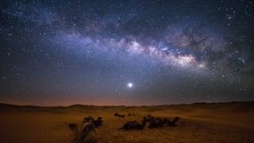 Sahara Milky Way stock video