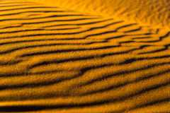 Sahara piasek fotografia stock