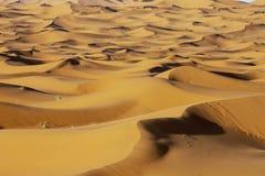 Sahara piaska diuny przy zmierzchem zaświecają na tle dramatyczny obrazy royalty free