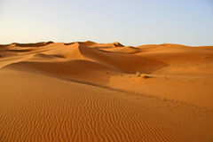 Sahara sanddunes. Landscape of Erg Chebbi in the Sahara desert in the south of Morocco stock image