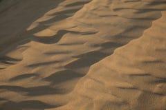 Sahara - (serie) Obrazy Stock