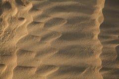 Sahara - (serie) Obrazy Royalty Free