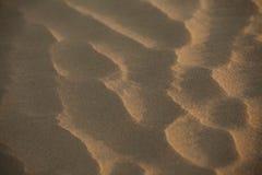 Sahara - (serie) Zdjęcia Stock