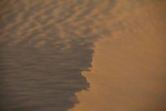 Sahara - (serie) Zdjęcie Royalty Free