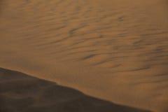 Sahara - (serie) Zdjęcia Royalty Free