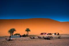 Sahara-Wüste Ð ¡ amel Marokko, Merzouga Lizenzfreie Stockfotos