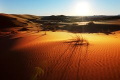 Sahara Wüste Lizenzfreies Stockfoto