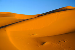 Sahara-Wüste Lizenzfreie Stockfotos