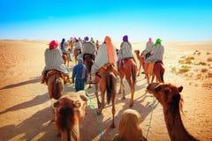 Sahara Wüste Lizenzfreie Stockbilder
